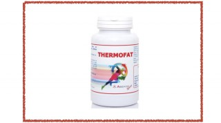 Thermofat - 100 Compresse